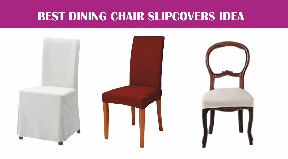 Best Dining Chair Slipcovers Idea