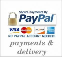 secure purchase with PayPal